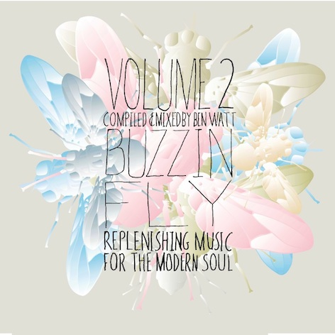 Buzzin' Fly Volume 2 (DJ Mix)