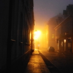 Video: Sunlight Follows The Night