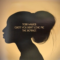 Terri Walker / 'Guess You Didn't Love Me' (Ben Watt Remix)
